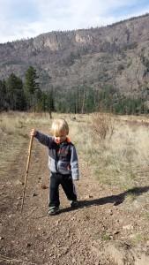 Hiking Stick Andrew