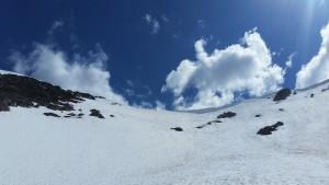 Ants on a Frosty Ridge
